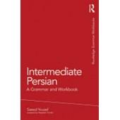 Intermediate Persian: A Grammar and Workbook (Grammar Workbooks)